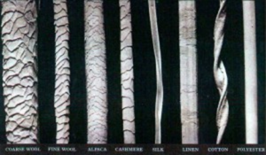 Wool fibers have scales, compared to smooth texture of other fibers