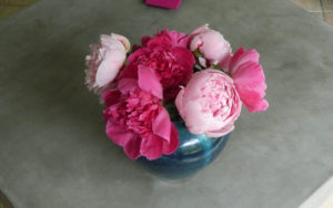 Peonies in ceramic vase